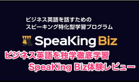 SpeaKing Biz体験レビュー